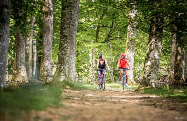 Faites le plein de nature : nos activités sont là pour vous !