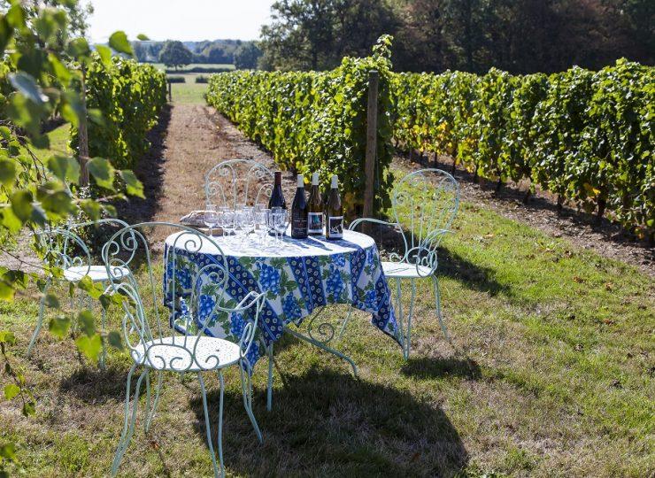 Au milieu des Vignes © De Jonghe