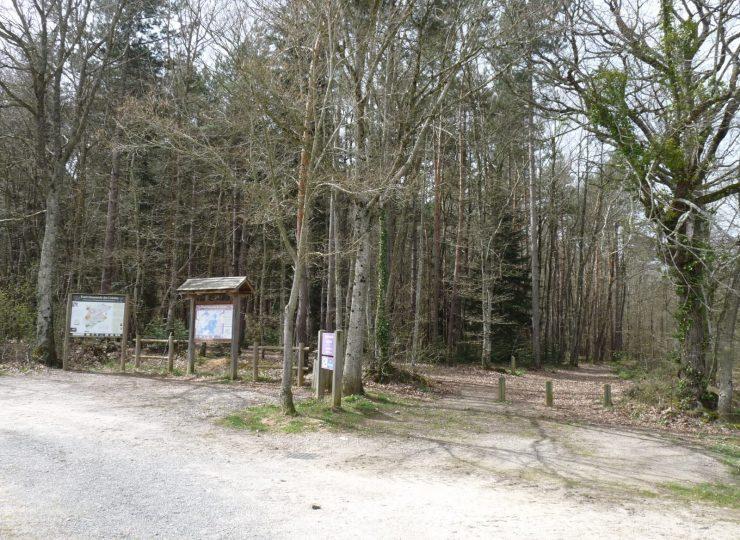 Sentier Salbrune